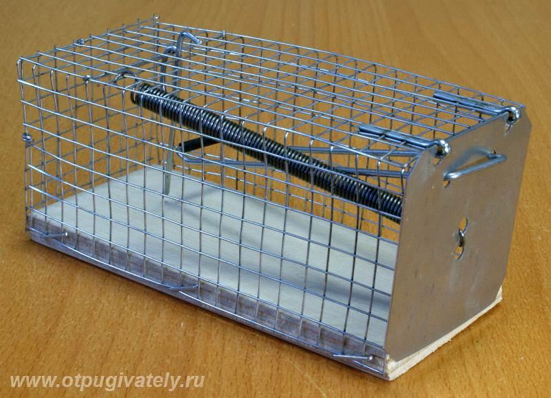 Как сделать клетку-ловушку