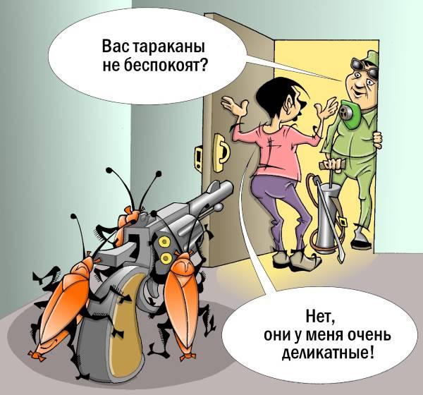 Деликатность тараканов